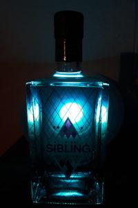 [Vergleich] Blaubeer-Gin