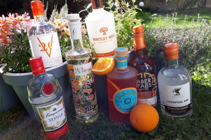 [Vergleich] Orangen-Gin