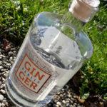[Vergleich] Gin aus Berlin