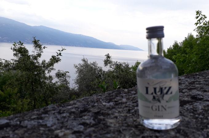 Luz Gin