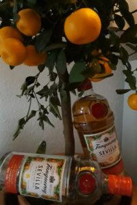 [Flasche leer] Tanqueray Flor de Sevilla